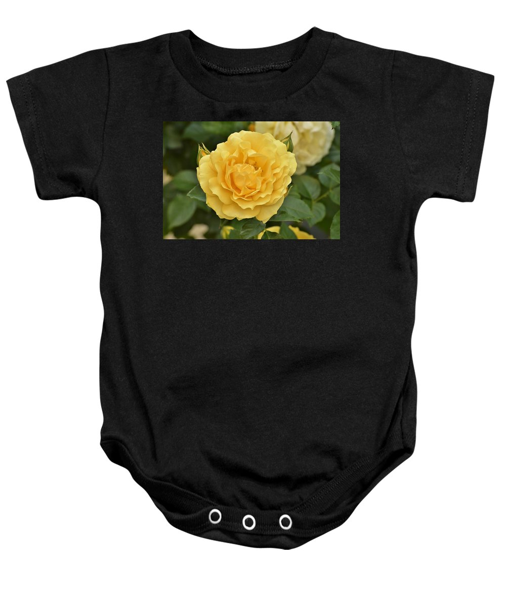 Linda Brody Baby Onesie featuring the photograph Yellow Rose IIi by Linda Brody