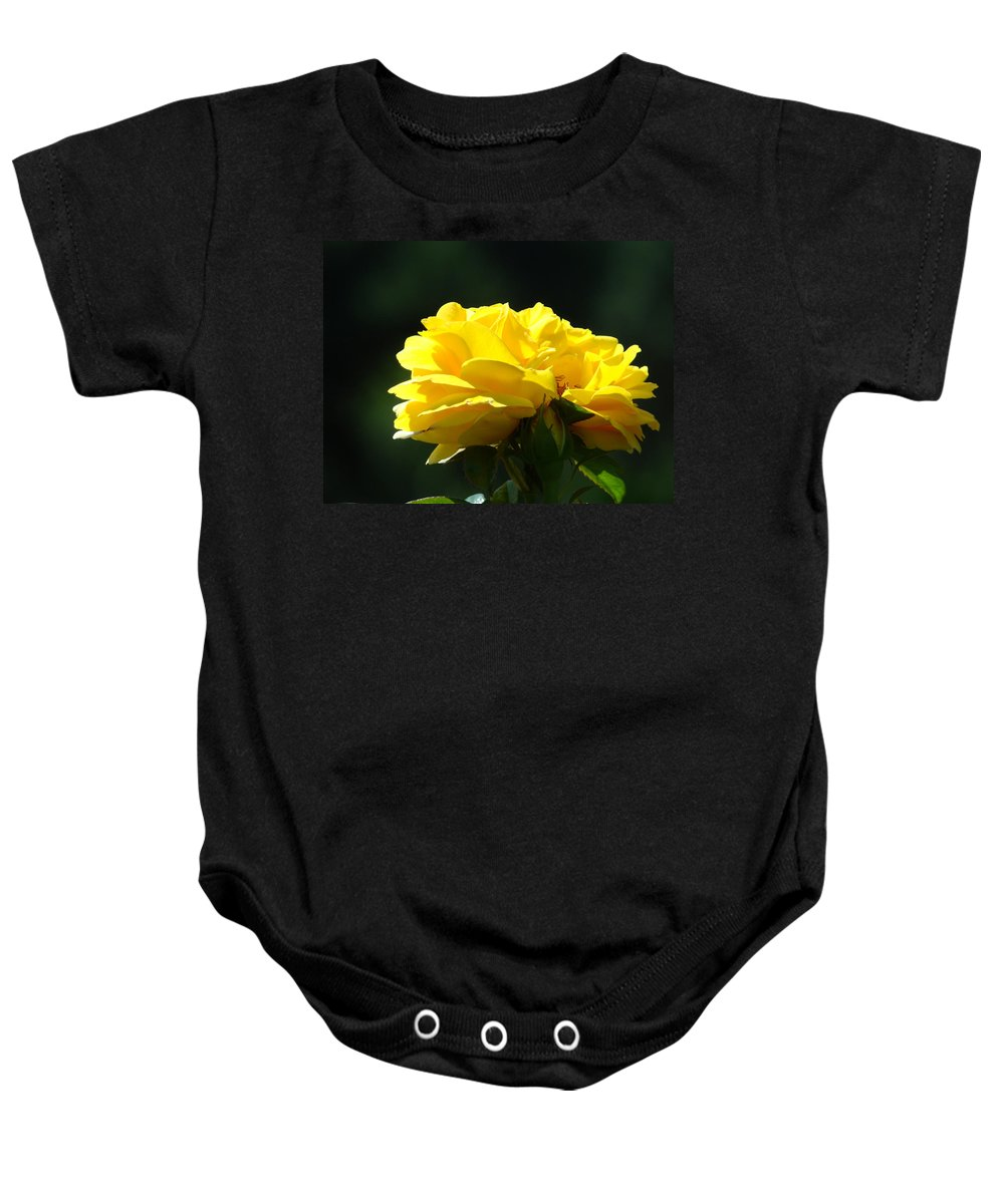 Rose Baby Onesie featuring the photograph Yellow Rose Sunlit Rose Garden Landscape Art Baslee Troutman by Baslee Troutman