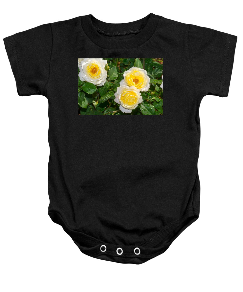 Yellow Baby Onesie featuring the photograph Yellow Roses by Royal Tyler