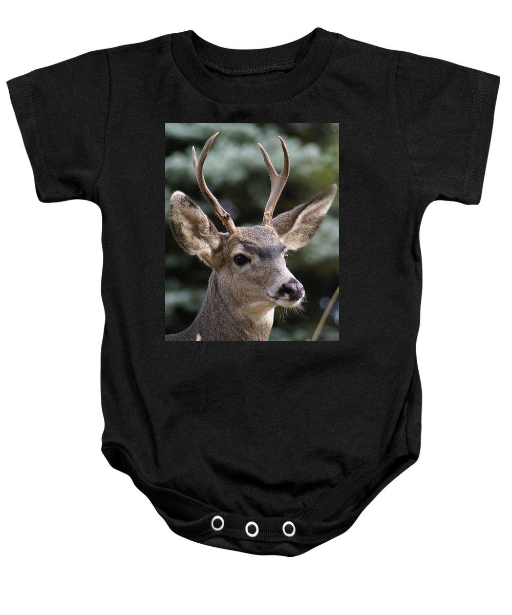 Spokane Baby Onesie featuring the photograph Young Buck by Ben Upham III