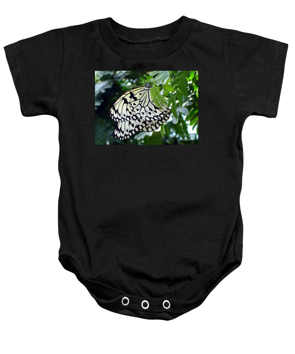 Butterfly Baby Onesie featuring the photograph Zebra In Disguise by Shelley Jones