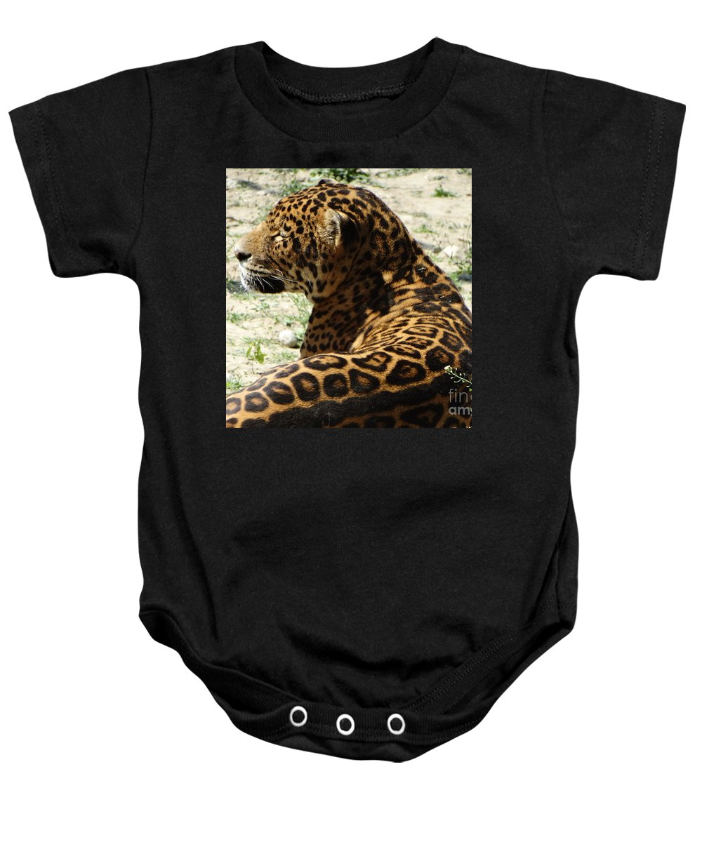 Wild Baby Onesie featuring the photograph Zoo 2015 006 by Dan Marinescu
