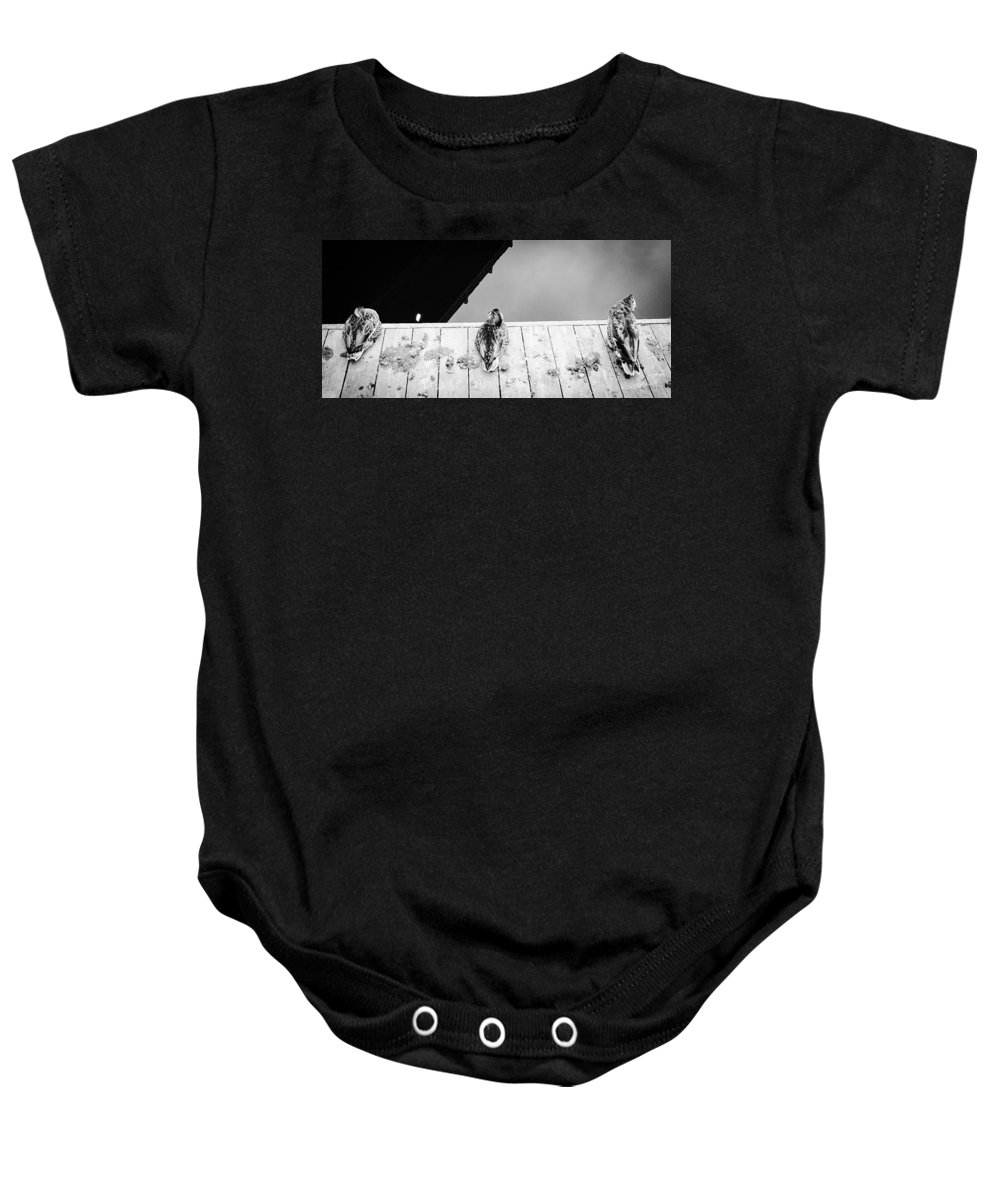 Waterfowl Photograph Baby Onesie featuring the photograph Hear, Speak And See by Desmond Raymond