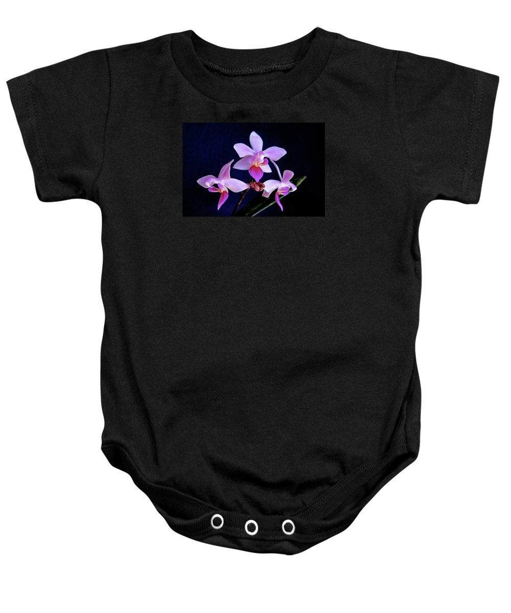 Orchids Baby Onesie featuring the photograph Orchid Ballet by Bill Morgenstern
