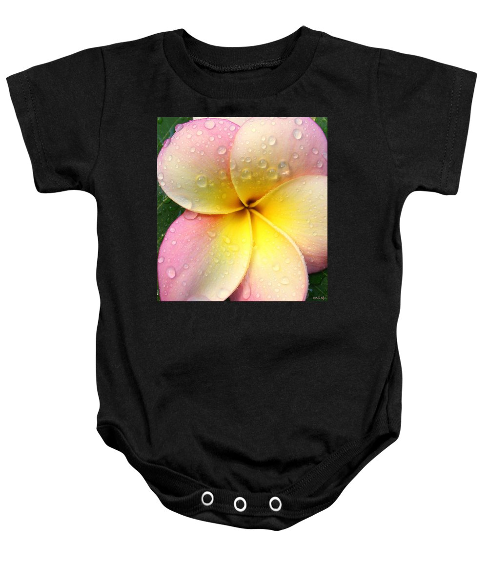 Frangapani Baby Onesie featuring the photograph Sun Shower by Holly Kempe