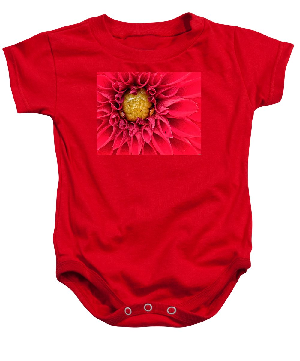 Red Baby Onesie featuring the photograph Red Dahlia by Photos By Cassandra