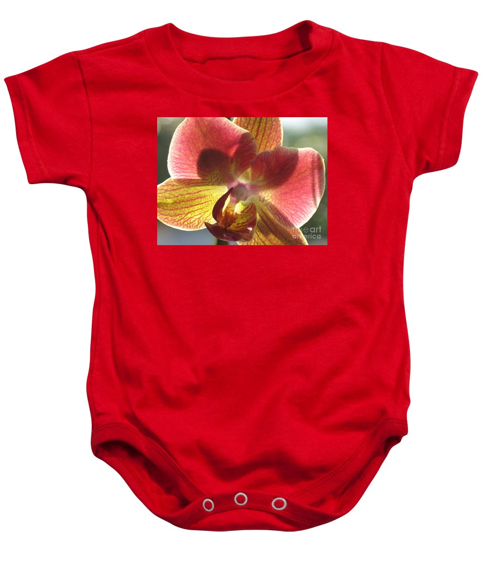 Orchid Baby Onesie featuring the photograph Orchid by Christiane Schulze Art And Photography