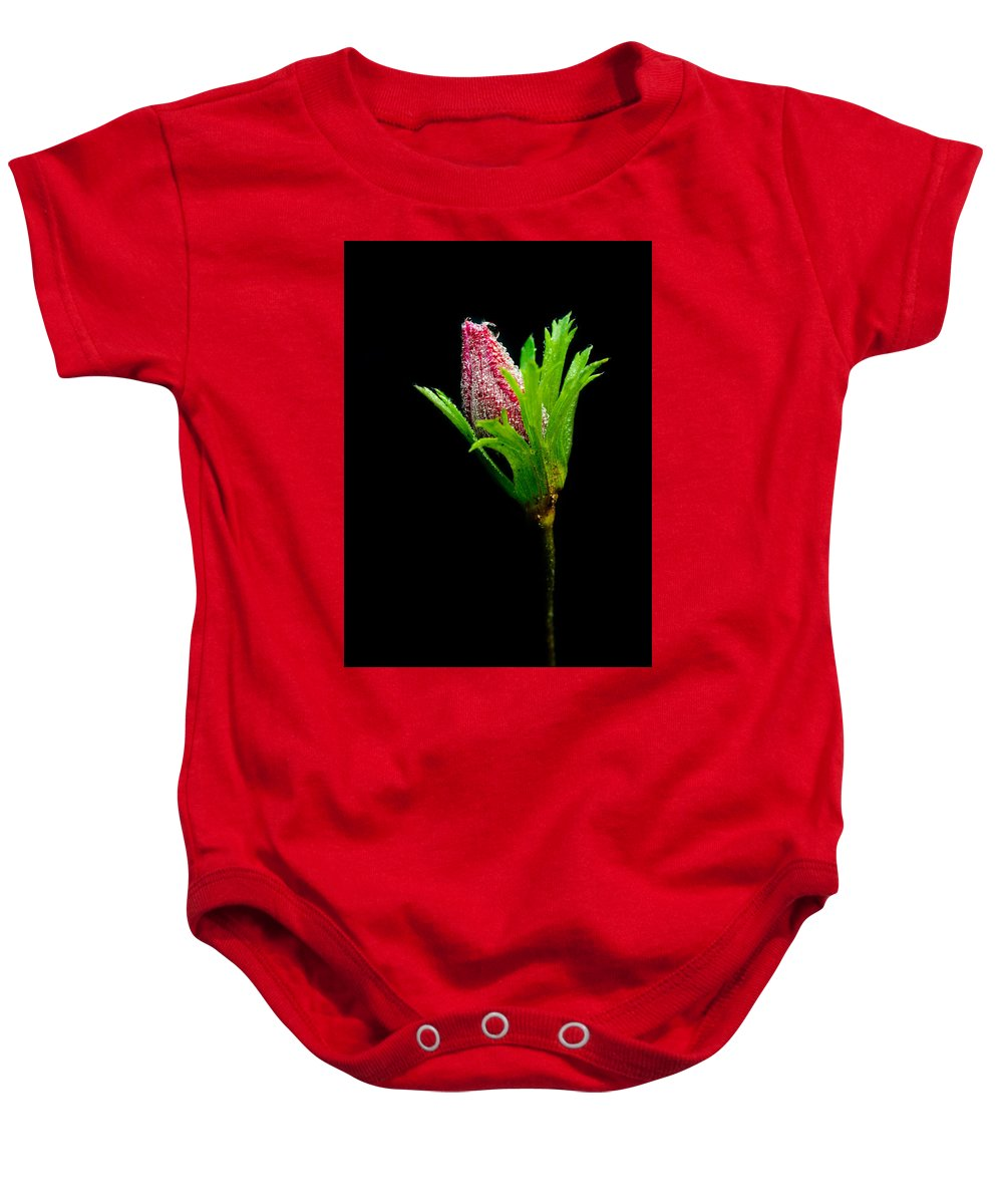 Flower Baby Onesie featuring the photograph Anemone Flower Details by Michalakis Ppalis