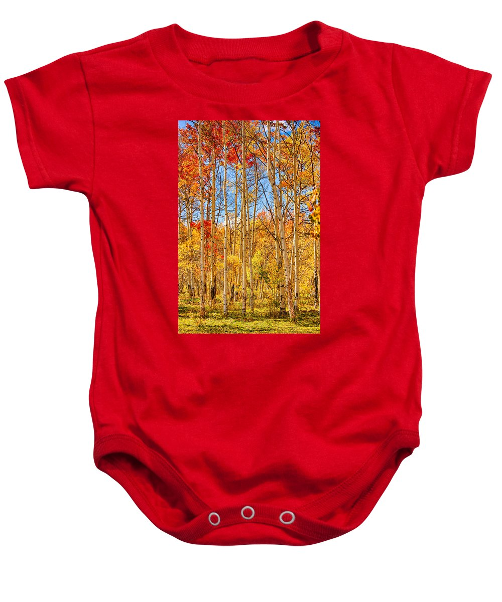 Autumn Baby Onesie featuring the photograph Aspen Fall Foliage Portrait Red Gold And Yellow by James BO Insogna
