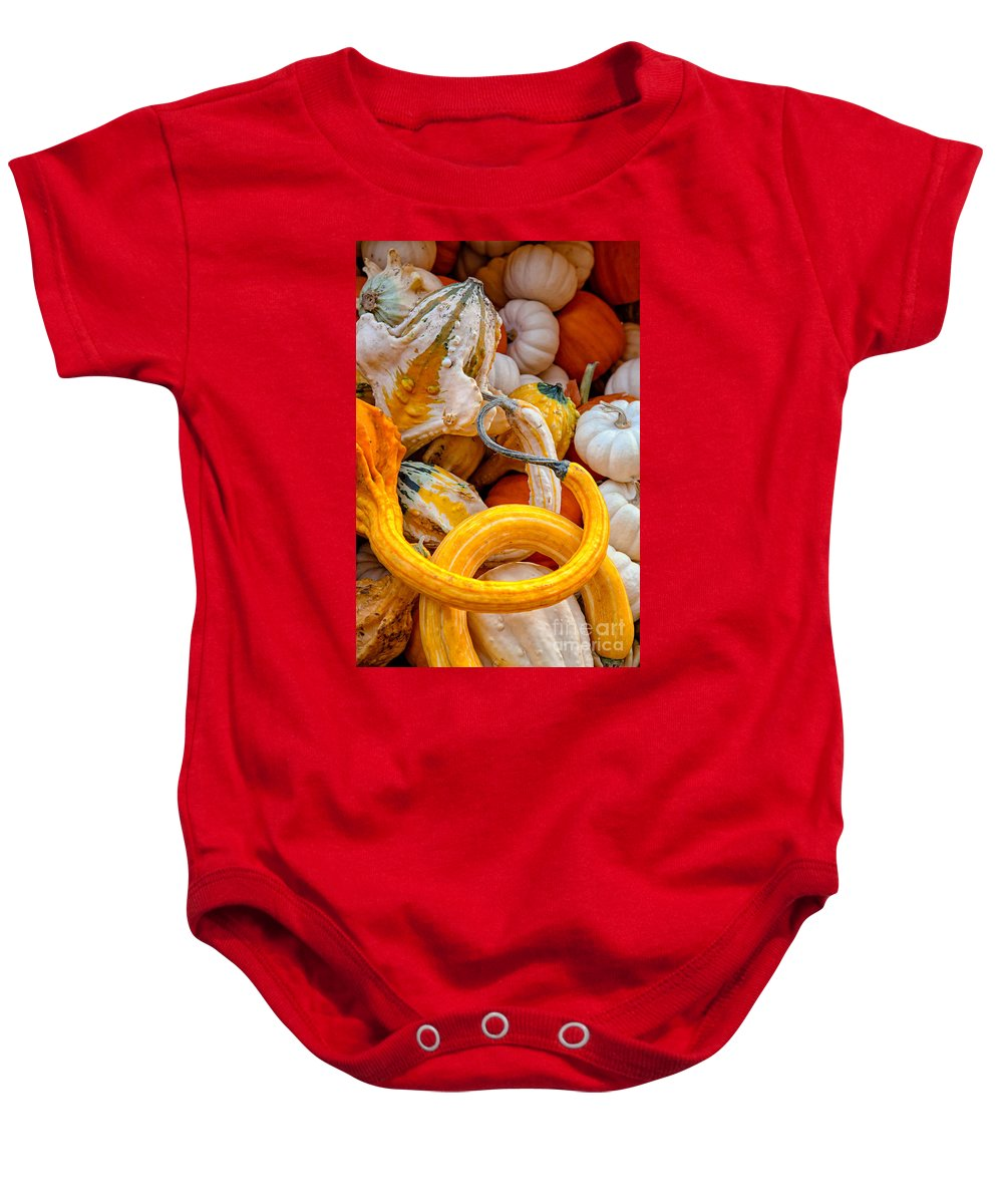 Gourds Baby Onesie featuring the photograph Assorted Gourds by Mary Smyth