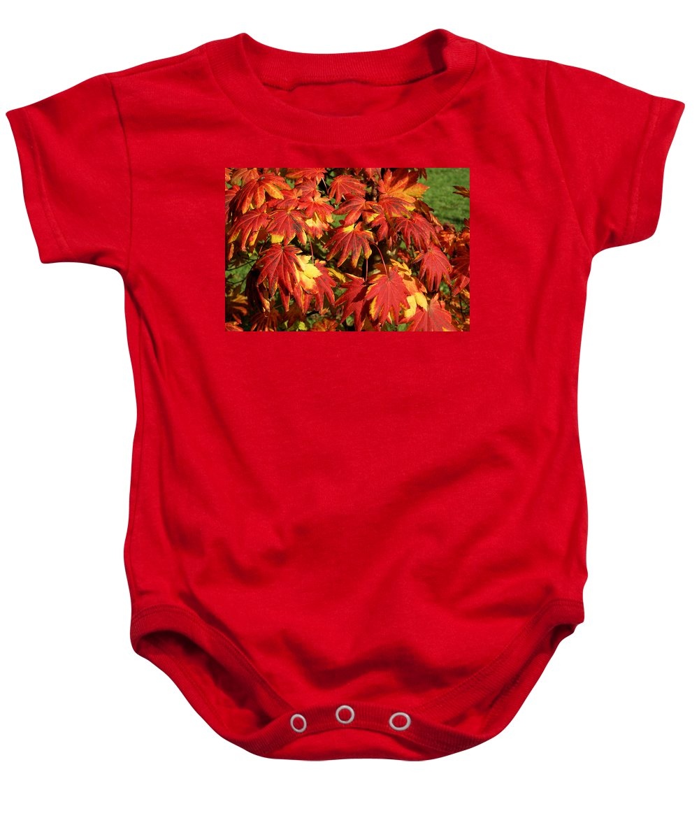 Autumn Baby Onesie featuring the photograph Autumn Leaves 08 by Ron Harpham