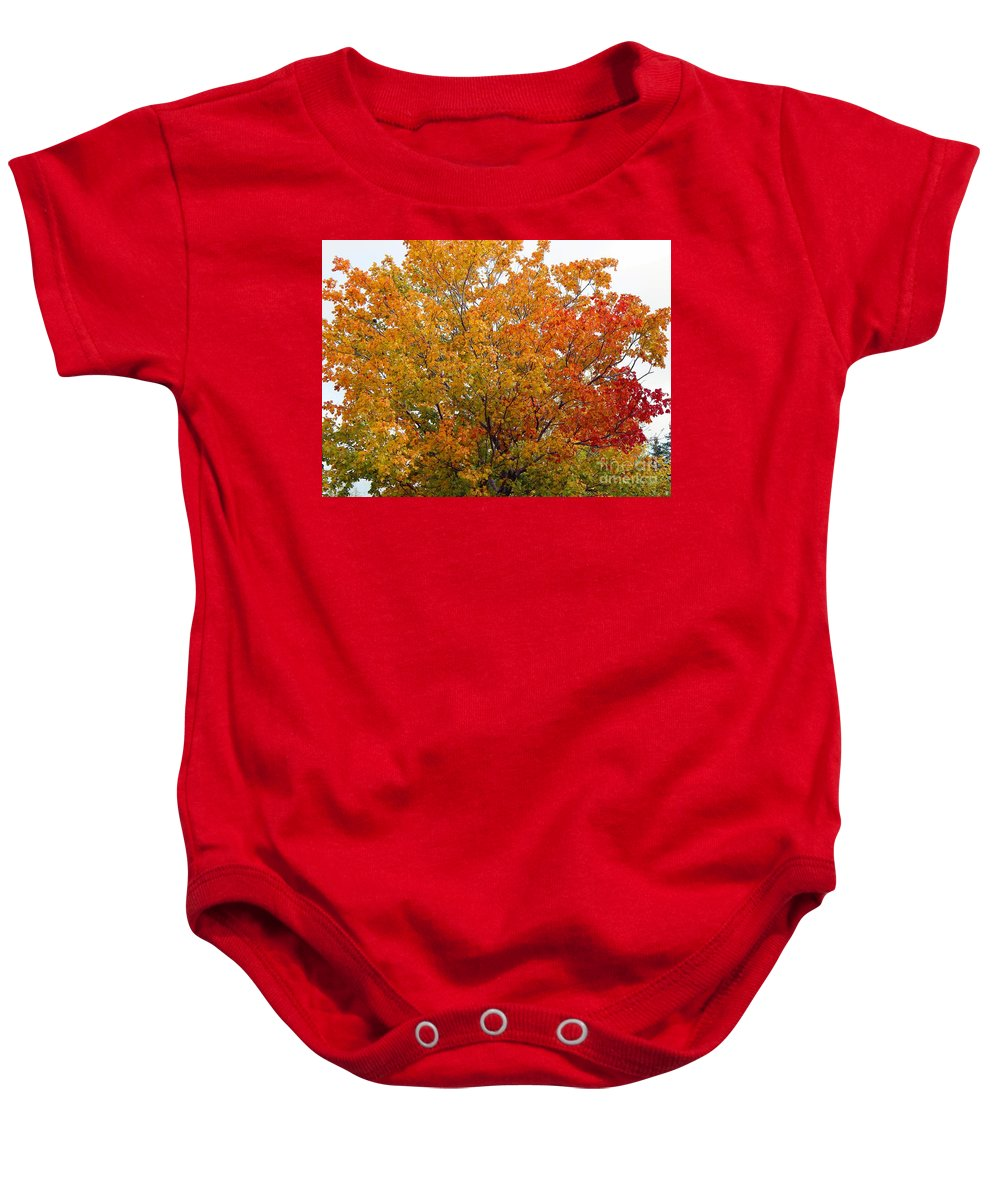 Autumn Maple Baby Onesie featuring the photograph Autumn Maple by Barbara Griffin