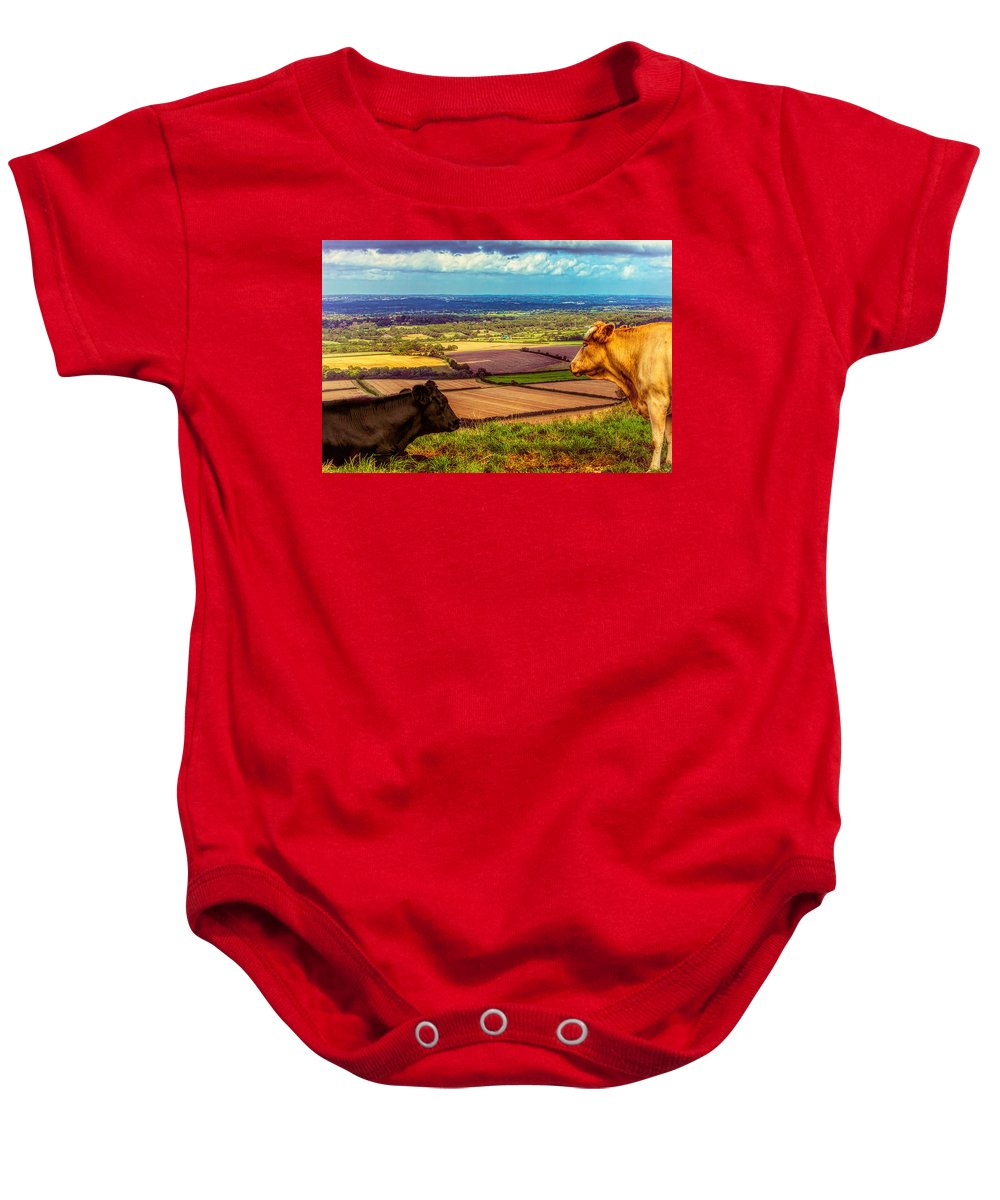 Bovine Baby Onesie featuring the photograph Bluebell And Buttercup by Chris Lord