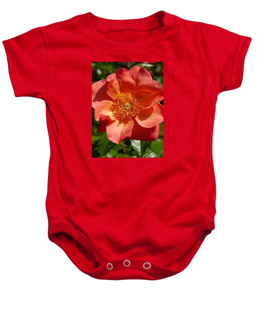Orange Rose Baby Onesie featuring the photograph Brighter Than Sunshine by Christiane Schulze Art And Photography