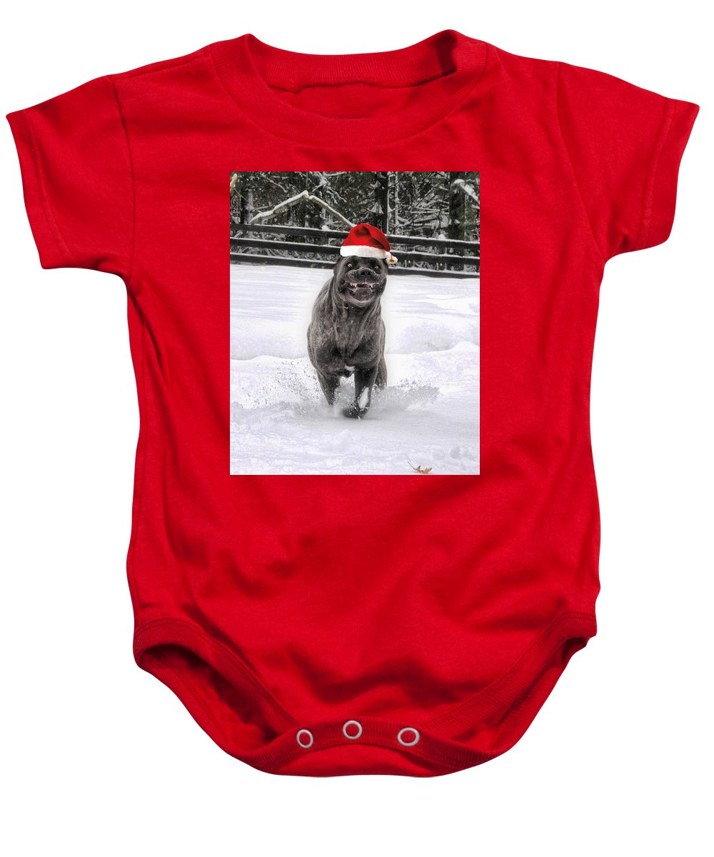 Cane Corso Baby Onesie featuring the photograph Cane Corso Christmas by Fran J Scott