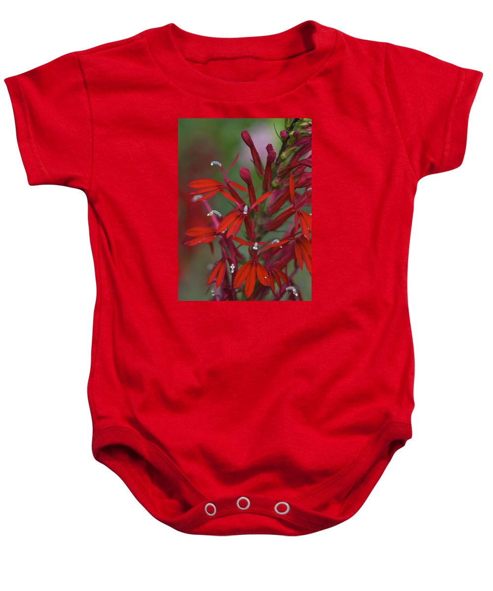 Cardinal Flower Baby Onesie featuring the photograph Cardinal Flower by Jane Eleanor Nicholas