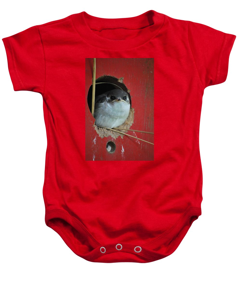 Bird Baby Onesie featuring the photograph Checkin Me Out by Kathy Sampson