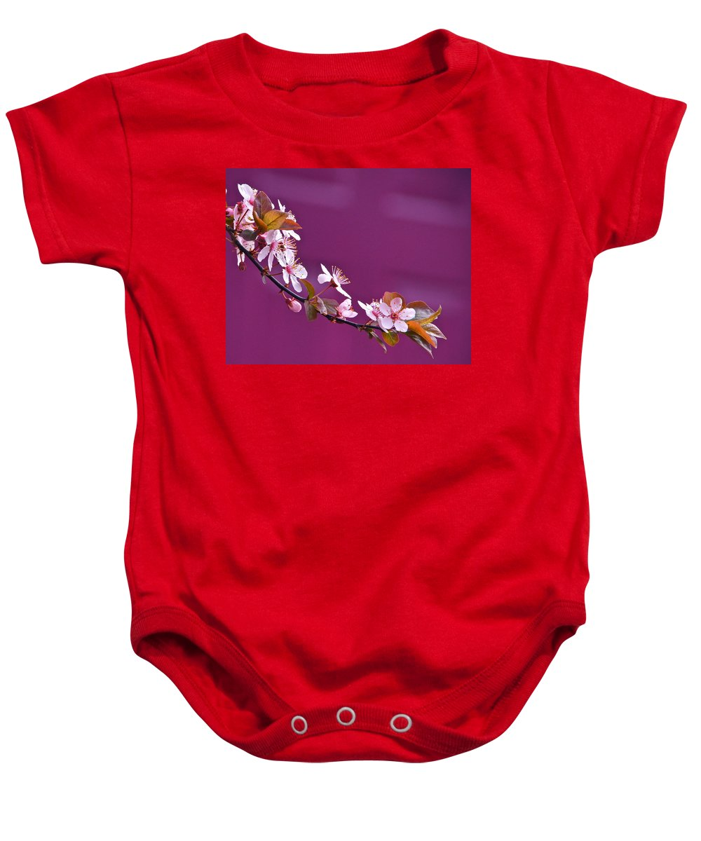 Cherry Blossoms Baby Onesie featuring the photograph Cherry Blossoms And Plum Door by Byron Varvarigos