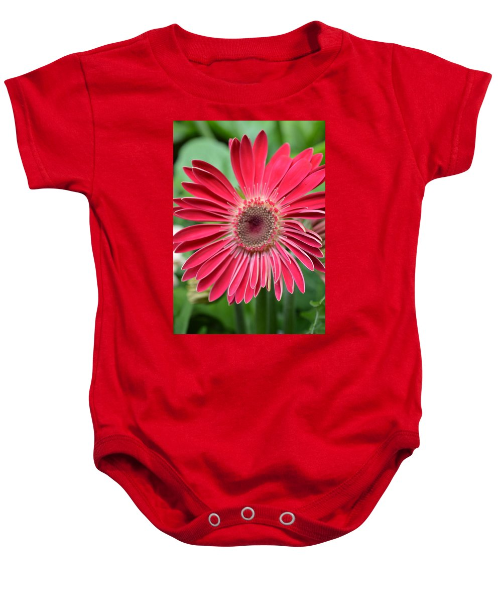 Gerber Baby Onesie featuring the photograph Dsc262-002 by Kimberlie Gerner