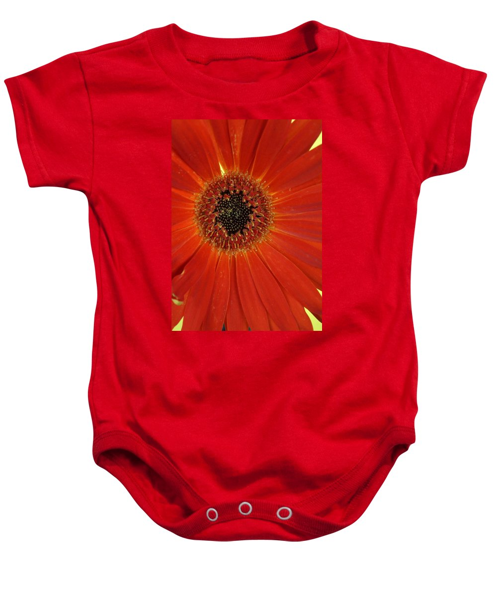 Gerber Baby Onesie featuring the photograph Dsc883d-001 by Kimberlie Gerner