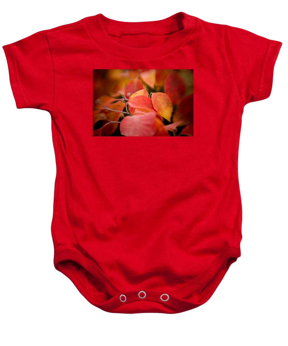Color Baby Onesie featuring the photograph Fall Colors 6675 by Timothy Bischoff