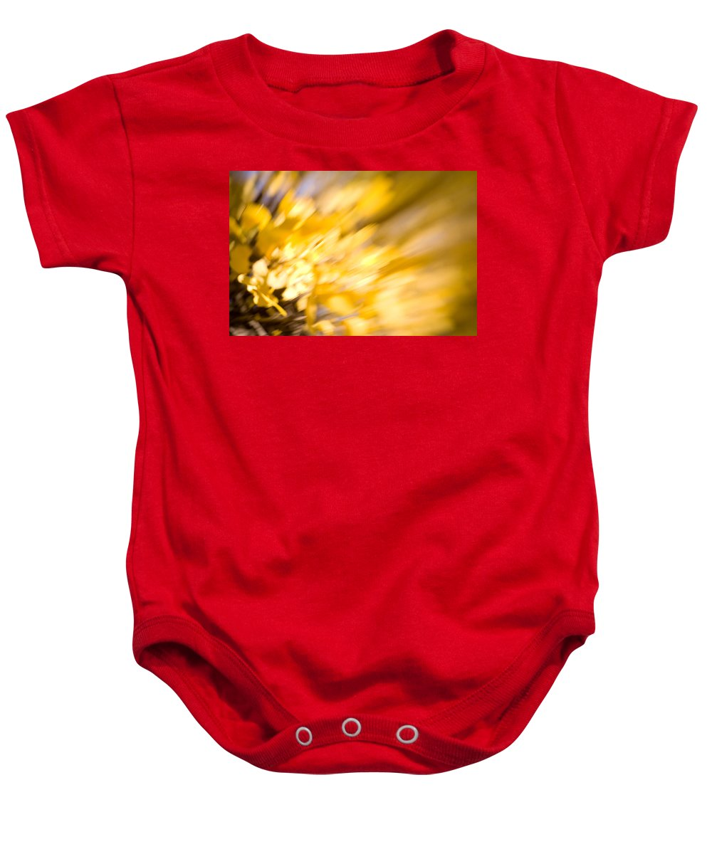 Color Baby Onesie featuring the photograph Fall Colors 6730 by Timothy Bischoff
