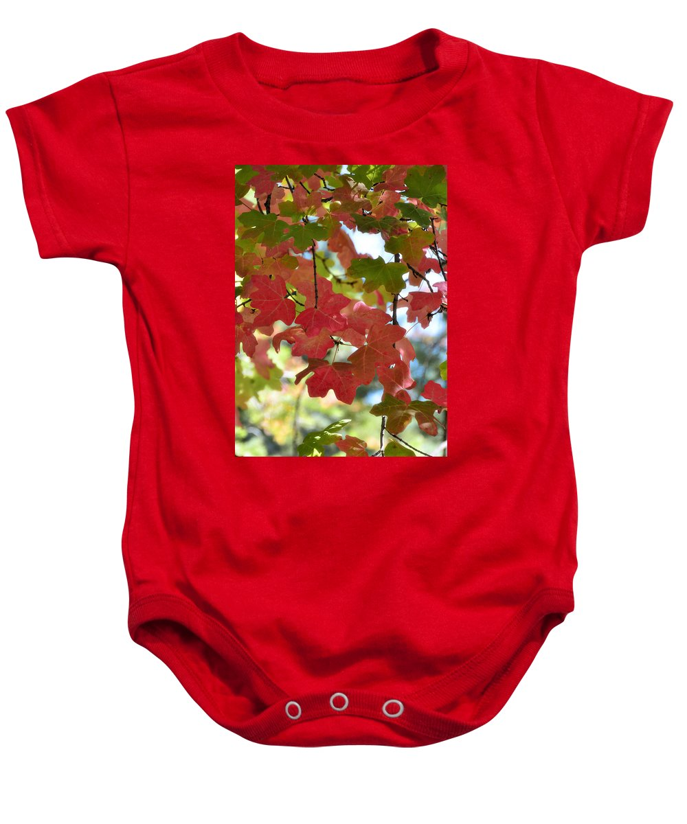 Fall Foliage Baby Onesie featuring the photograph First Signs Of Fall by Saija Lehtonen