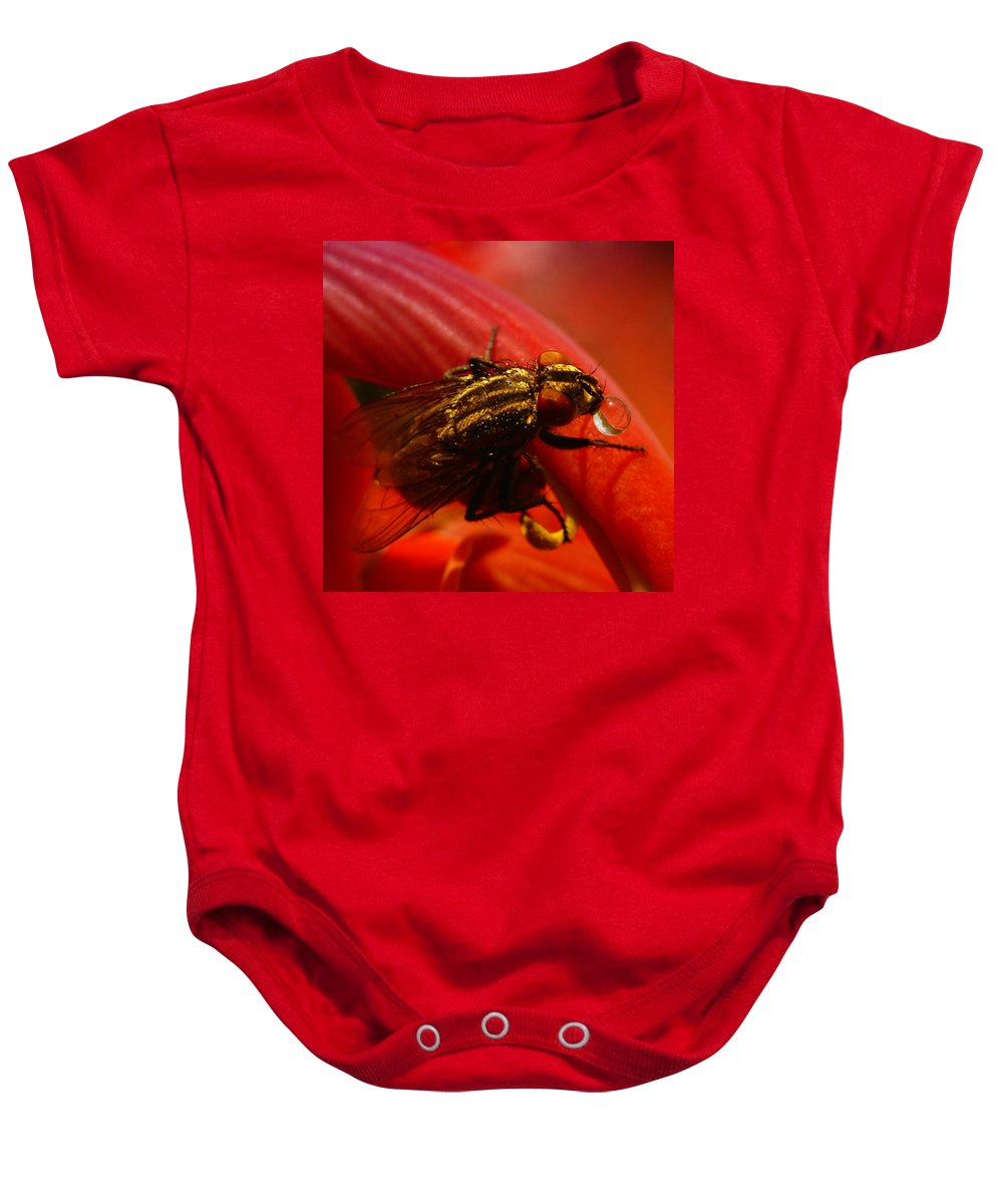 Detailed Closeup Of Fly With Droplets Baby Onesie featuring the photograph Fly by TouTouke A Y