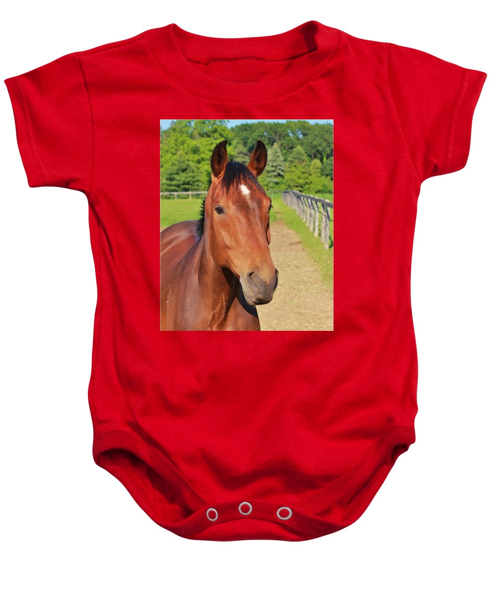 Horse Baby Onesie featuring the photograph Horse In Stable by Jim Koniar