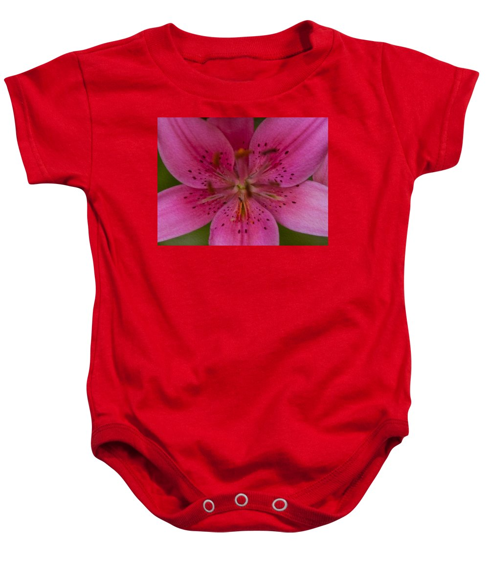 North Cascades Baby Onesie featuring the painting Hot Pink Close Up by Omaste Witkowski