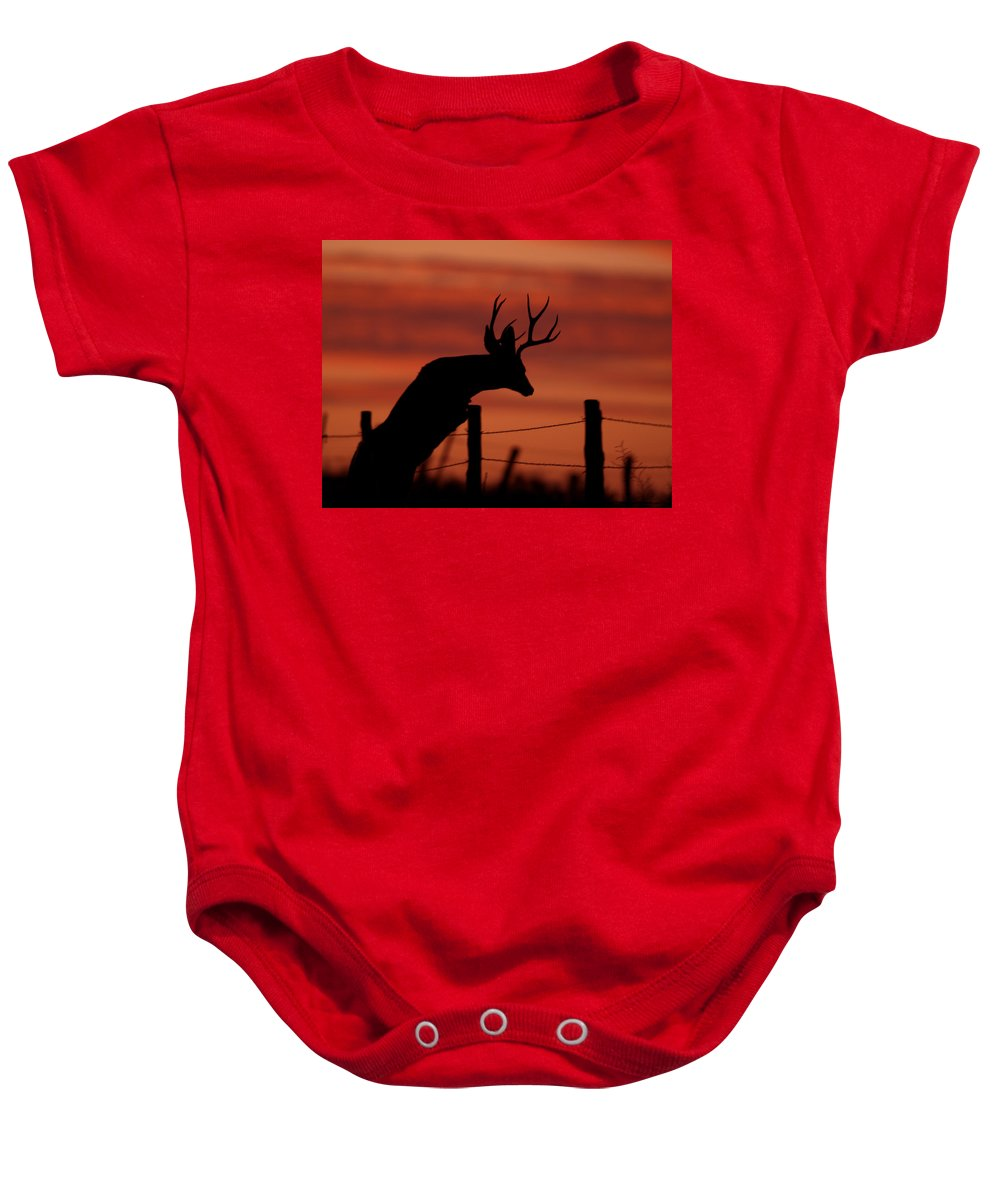 Mule Baby Onesie featuring the photograph Mule Deer Buck Jumping Fence At Sunset by Gary Langley