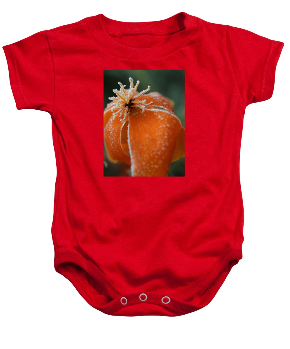 Frost Baby Onesie featuring the photograph Natures Frost by Miguel Winterpacht