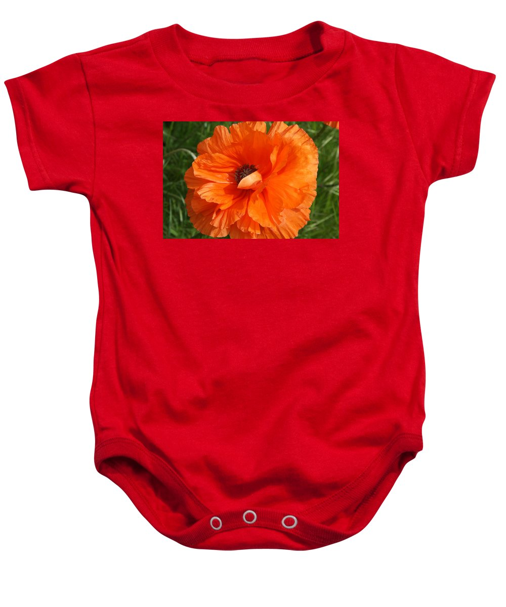 Poppy Baby Onesie featuring the photograph Olympia Orange Poppy by Christiane Schulze Art And Photography
