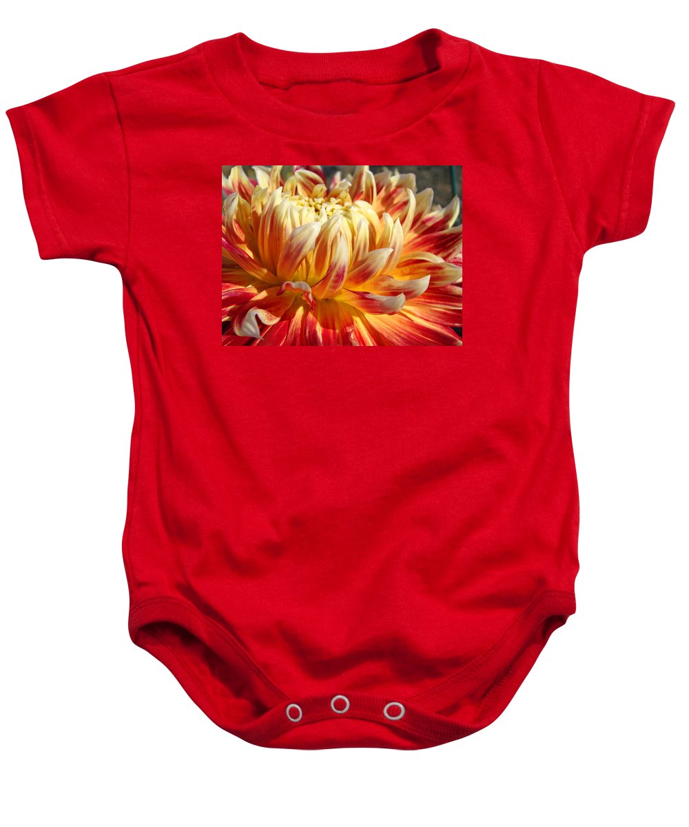 Floral Baby Onesie featuring the photograph Orange Floral Art Dinner Plate Dahlia Flower by Baslee Troutman