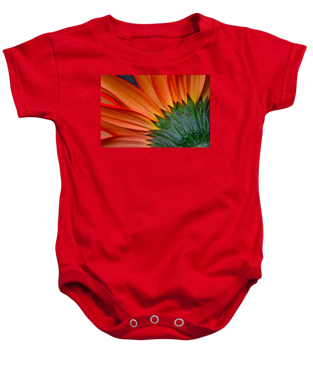 Brush Baby Onesie featuring the photograph Painters Brush by Frozen in Time Fine Art Photography
