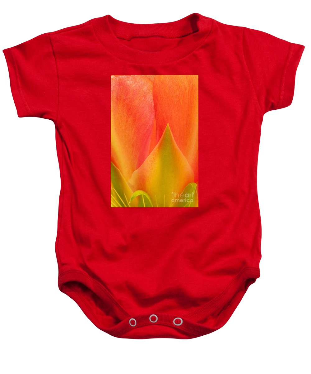 Texas Prickly Pear Baby Onesie featuring the photograph Prickly Pear Flower Petals Opuntia Lindheimeni In Texas by Dave Welling