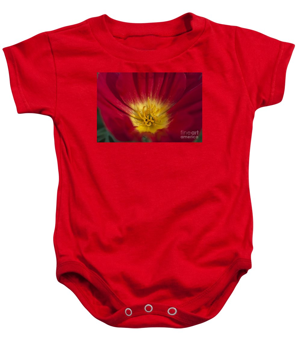 Red And Yellow Poppy Baby Onesie featuring the photograph Red And Yellow Poppy 1 by Steve Purnell