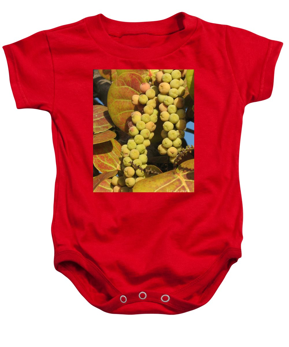Seagrapes Baby Onesie featuring the photograph Ripe Seagrapes by Christiane Schulze Art And Photography