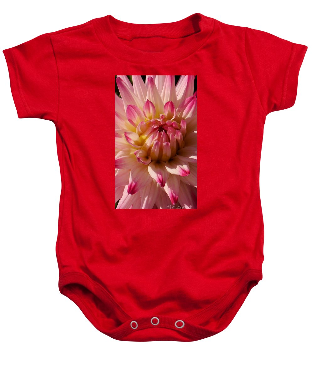Pink Dahlia Baby Onesie featuring the photograph Sparkling Pink Dahlia by Christiane Schulze Art And Photography