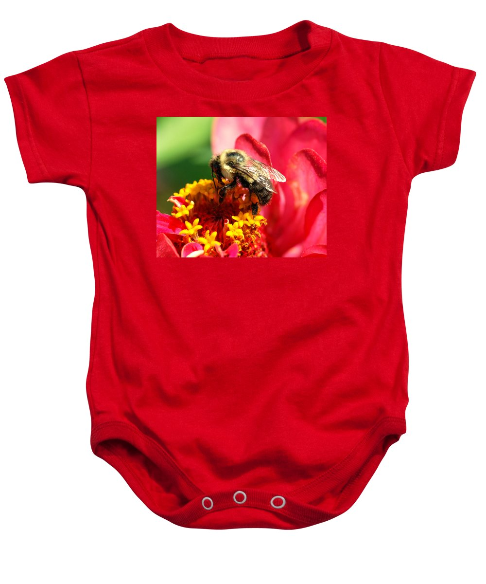Zinnia Baby Onesie featuring the photograph The Zinnia And The Bee by Optical Playground By MP Ray