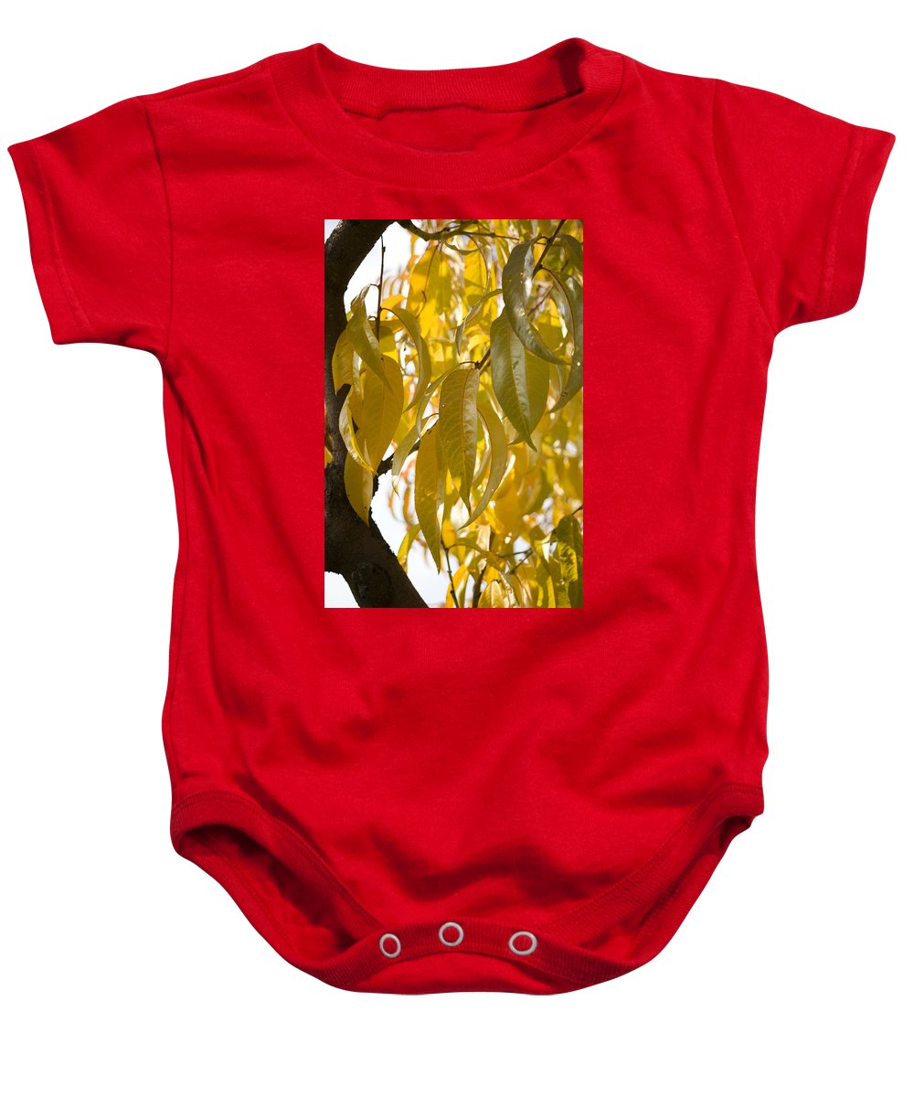 Autumn Baby Onesie featuring the photograph Autumn by Ian Middleton
