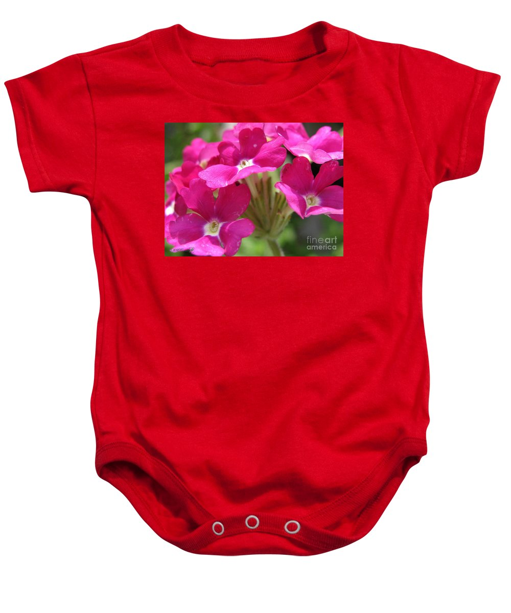 Verbena Baby Onesie featuring the photograph Verbena From The Ideal Florist Mix by J McCombie