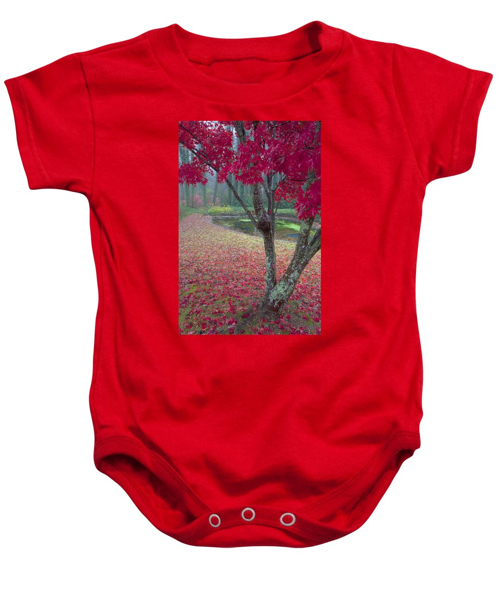 Red Photographs Baby Onesie featuring the photograph Autumn Red by Rob Travis