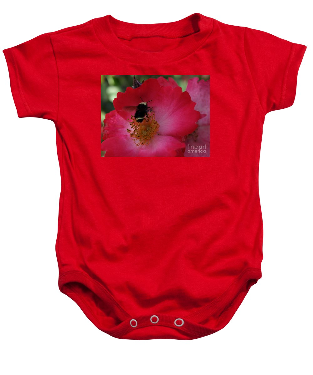 Bee Baby Onesie featuring the photograph Busy Afternoon by Jacklyn Duryea Fraizer