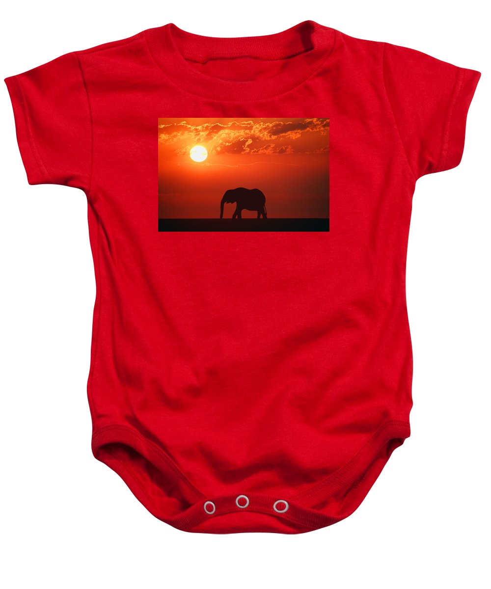Horizontal Baby Onesie featuring the photograph Elephant Silhouette by Don Hammond