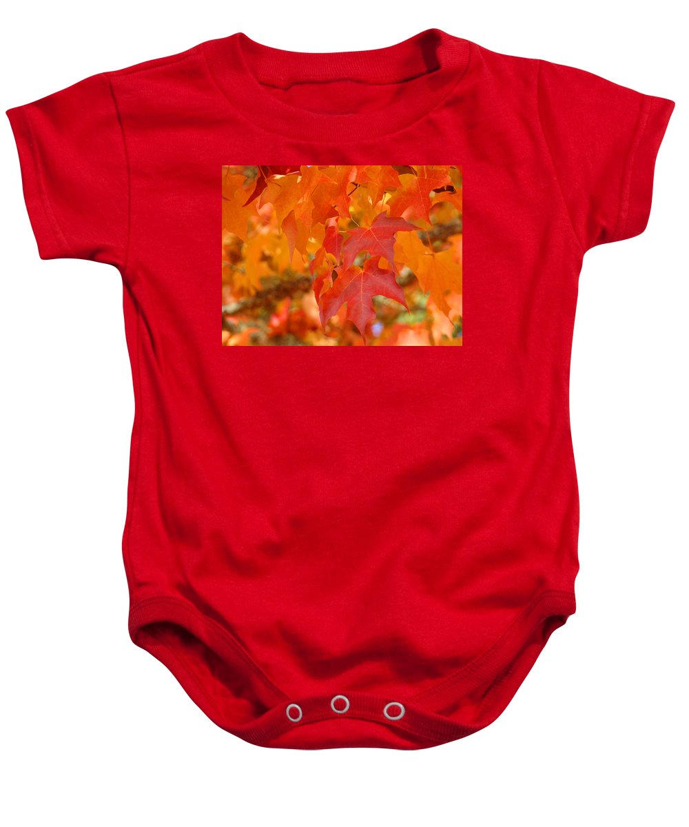 Autumn Baby Onesie featuring the photograph Fall Tree Leaves Art Prints Orange Red Autumn by Baslee Troutman
