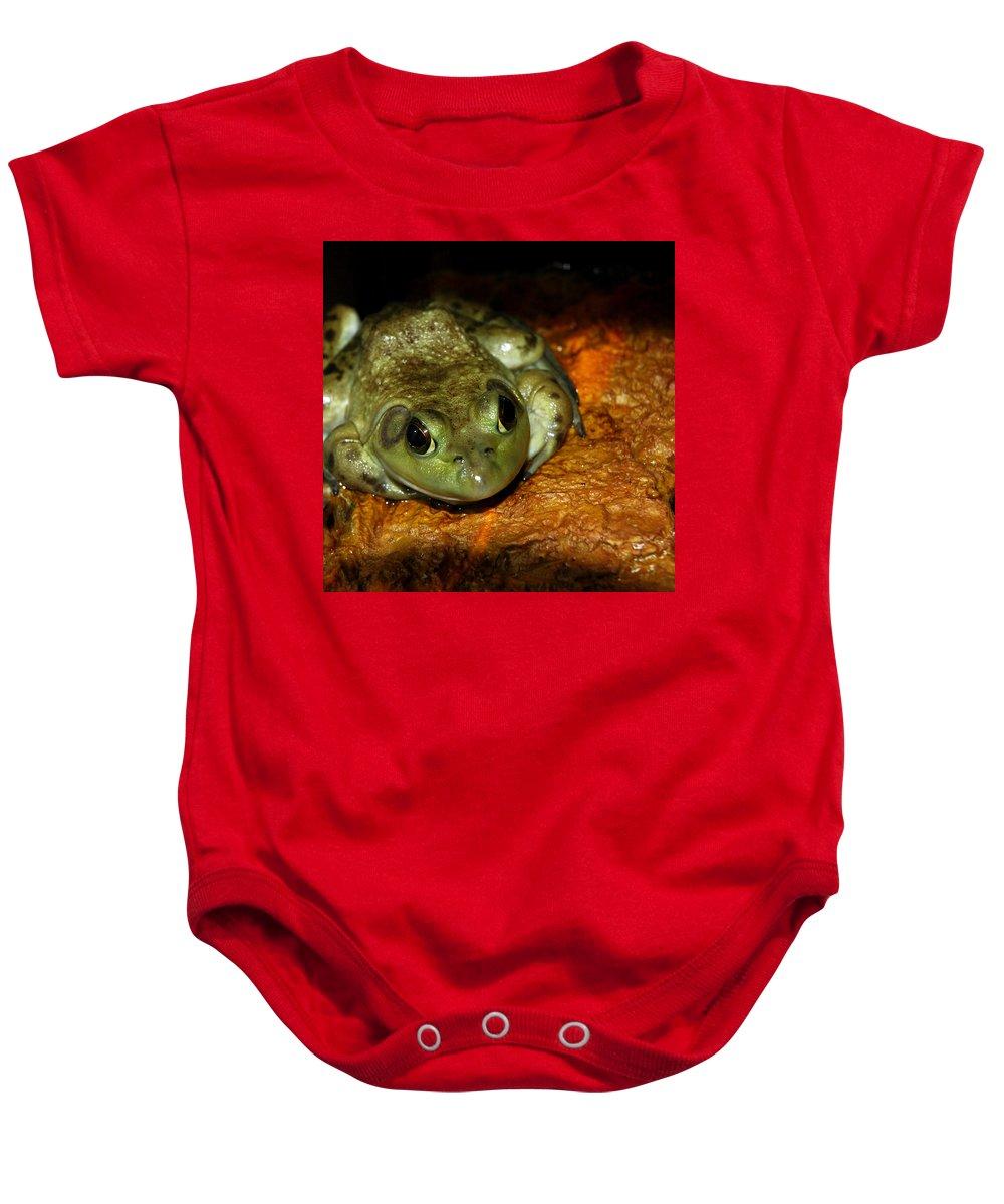 Usa Baby Onesie featuring the photograph Frog Love by LeeAnn McLaneGoetz McLaneGoetzStudioLLCcom