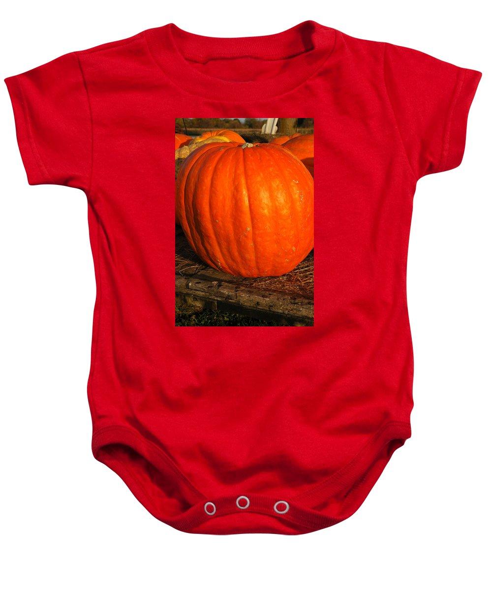 Food And Beverage Baby Onesie featuring the photograph Largest Pumpkin by LeeAnn McLaneGoetz McLaneGoetzStudioLLCcom