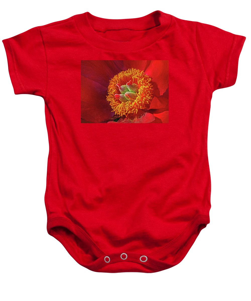 Red Peony Baby Onesie featuring the photograph Red Peony by Dave Mills