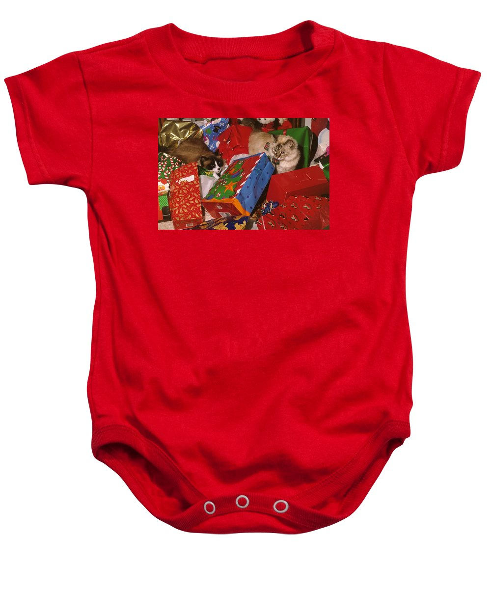 Cats Baby Onesie featuring the photograph Under The Christmas Tree by Larry Allan
